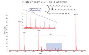 рис 1_ MLDI HECID lipid analysis.png